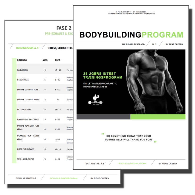 bodybuilding-program2-copy